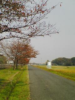 20091110_1.JPG